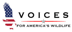 Voices for America's Wildlife